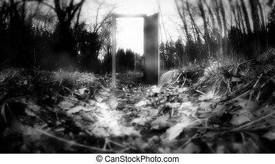 nowhere., mystérieux, forêt, porte