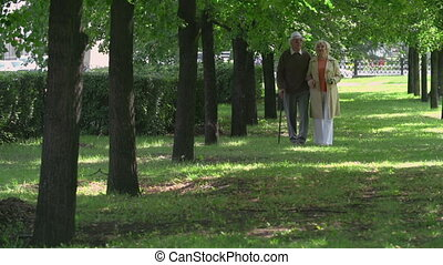 Nowhere to Hurry - Two seniors approaching camera walking...