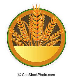 nowoczesny, pszenica, znak