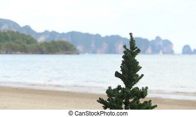 nowy rok, drzewo