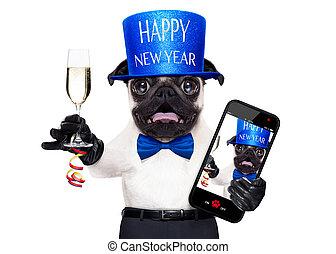 nowy rok, pies, szczęśliwy
