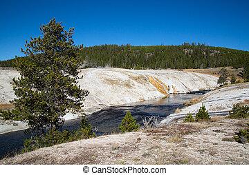 np, yellowstone