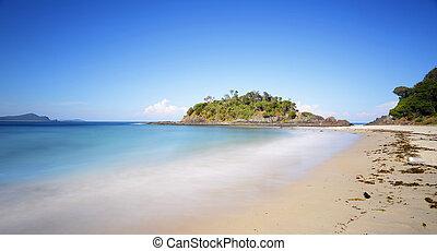 nsw, playa, australia, rocas, sello, uno, número