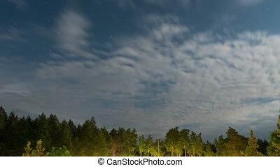 nuages, étoiles, mouvement, ciel, arbres, aube, contre, fond, nuit, au-dessus