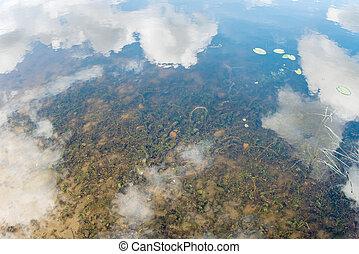 nuages, être, ciel, -, reflété, réalité, eau, parallèle