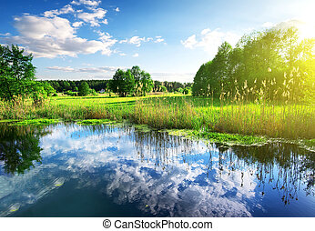 nuages, dans, rivière