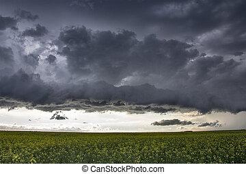 nuages, orage, prairie, canada