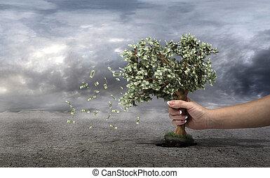 nuages, perte, concept, financier, argent gérance, argent., gris, arbre, main, arrière-plan., économies, profit., sélectionne, pris, la terre, dette, ton, perdre, budget.