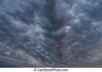 nuages sombres, florida., former, sur, everglades, orage