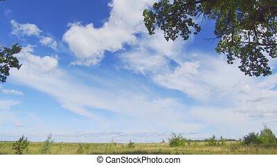 nuages, sur, gonflé, doux, brise, prairie, dérive, russe
