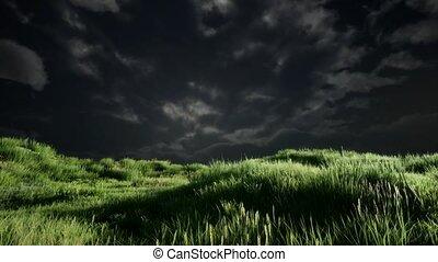 nuages tempête, au-dessus, herbe, pré, vert