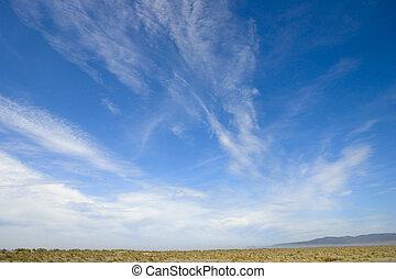 nuages, wispy, plage, au-dessus