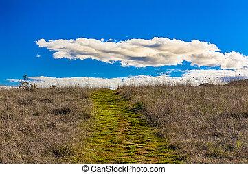 nubes, primero, hinchado, verde, horizonte, trayectoria, ...