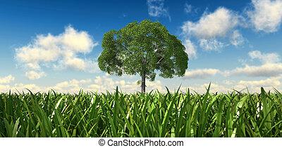 nubes, punto, árbol, aislado, fondo., bajo, campo, vista,...