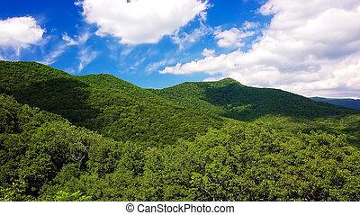 nubes, rollo, pasado, escénico, montañas, de, carretera ajardinada de cumbre azul, en, asheville, carolina del norte