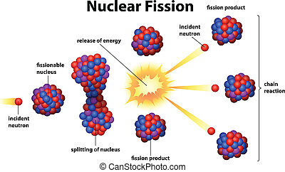 Nuclear fission - Illustration of the nuclear fission on a...