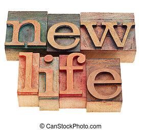 nueva vida, palabras, en, texto impreso, tipo