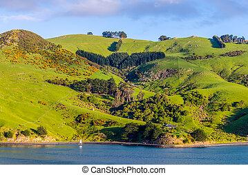 nueva zelandia, otago, región, costero, paisaje