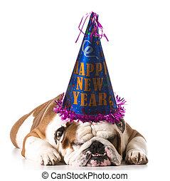 nuevo, feliz, perro, año