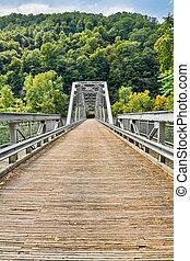 nuevo, río, puente