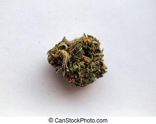 nug, médico, califórnia, marijuana