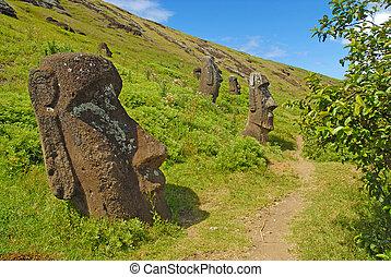 nui, moai, isola pasqua, rapa