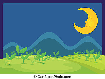nuit, beau, lune