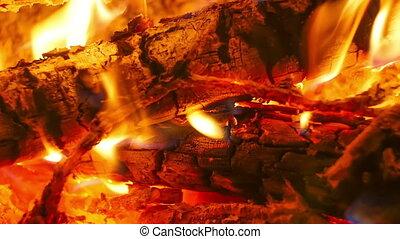 nuit, branches, défaillance, brulure, forest., feu camp, temps