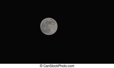 nuit, clair, entiers, ciel, lune