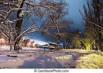 nuit, couple, silhouettes, neigeux, lumières, banc, parc