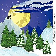nuit, hiver, forêt, scène