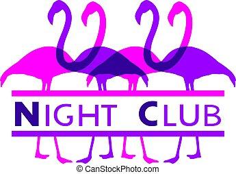 nuit, illustration, club, flamants rose