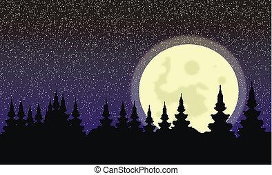 nuit, lune, grand, forêt, paysage