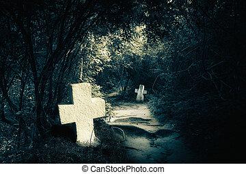 nuit, mystérieux, abandonnés, forêt, tombes, sombre
