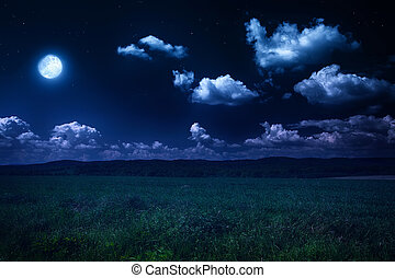 nuit, nature, été, paysage, beau, éclairé par la lune