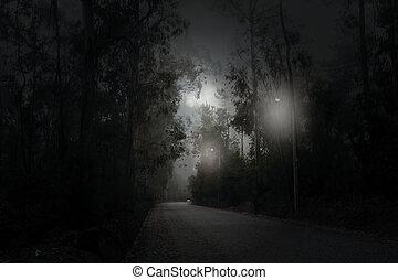 nuit, route, lune, entiers, forêt