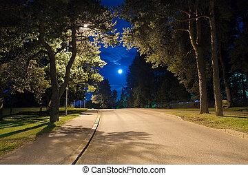 nuit, ruelle