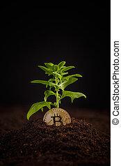 numérique, argent, croissance, concept