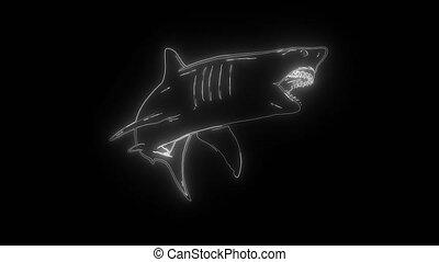 numérique, blanc, néon, vidéo, requin