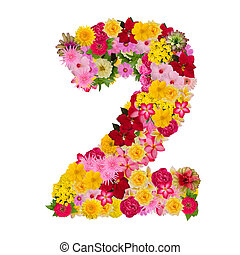 Number 2 made from flower isolated on white background. Whit clipping path