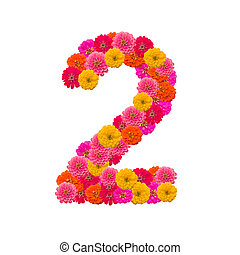 number 2 made from Zinnias flowers