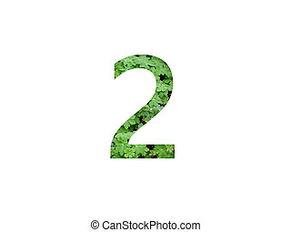 Number 2 of the alphabet made with green leaf of geranium