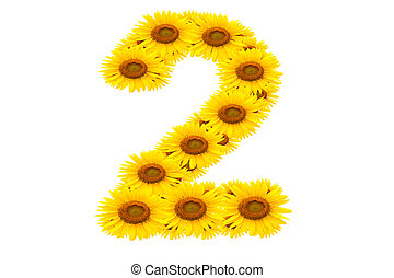 Number 2,  Sunflower isolate on White background