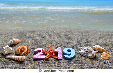 Number 2019 and sea shell on the sand beach.
