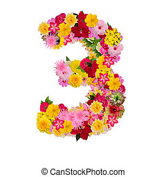 Number 3 made from flower isolated on white background. Whit clipping path