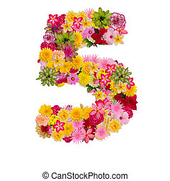 Number 5 made from flower isolated on white background. Whit...