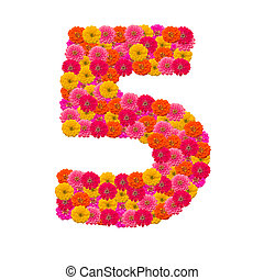 number 5 made from Zinnias flowers