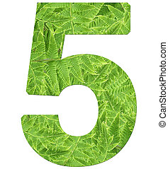 number 5 with fern texture, isolated on white background, font Helvetica World, bold
