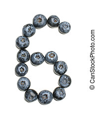 Number 6 arranged from northern highbush blueberry isolated
