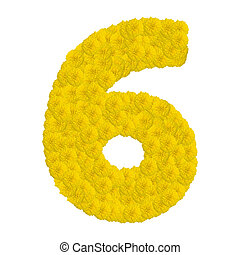 Number 6 made from marigold flower isolated on white background